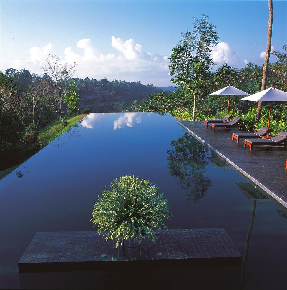 бассейн в отеле Alila Ubud