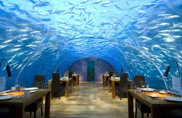 Ithaa Подводный ресторан