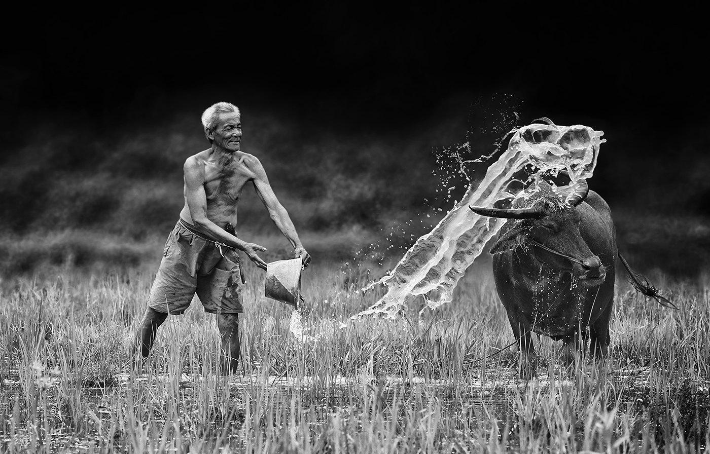 повседневная жизнь индонезийских деревень