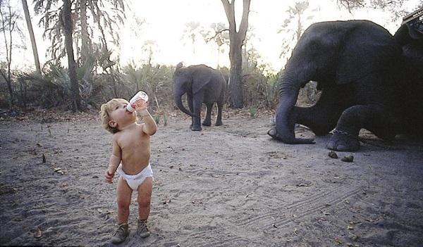 Типпи Дегре в Африке