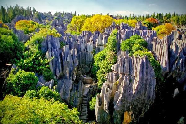 Чудо поднебесной - каменный лес